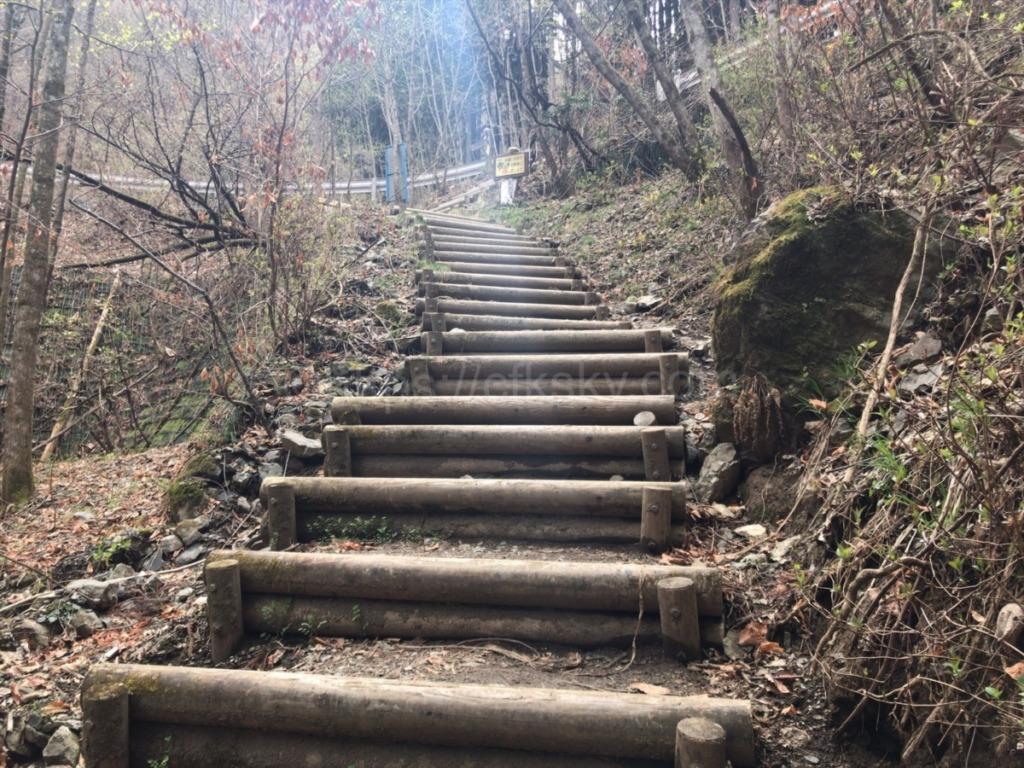 棒ノ折山登山の車道に出る前の木段