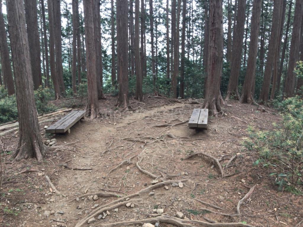 棒ノ折山・棒ノ嶺 登山からの下山でベンチのある休憩場所