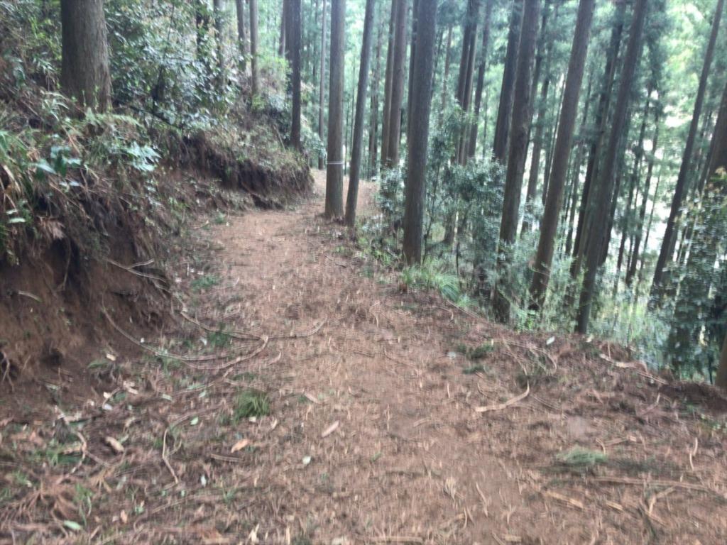 棒ノ折山・棒ノ嶺 登山からの下山