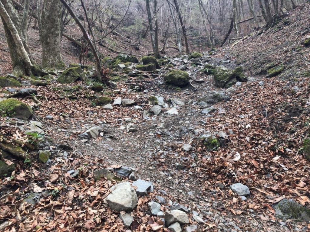 棒ノ折山・棒ノ嶺 登山の車道横にある休憩ポイントからの登山道