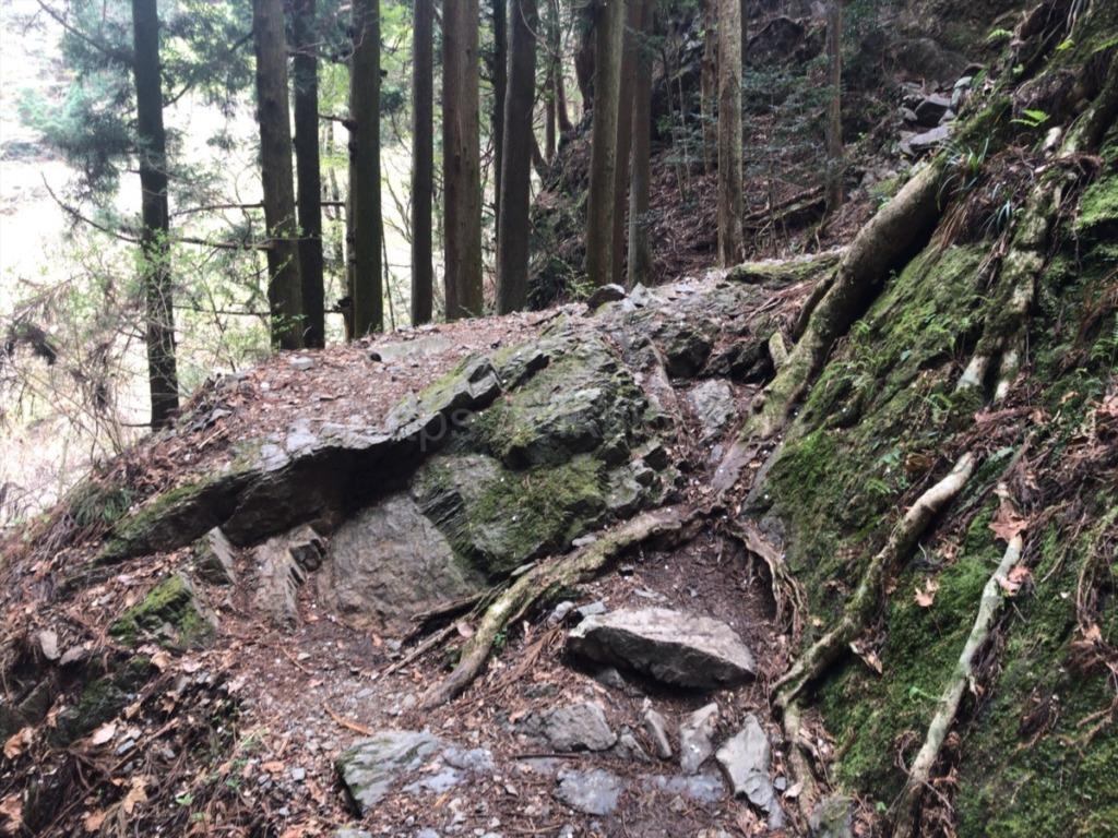棒ノ折山・棒ノ嶺 登山道の案内表示