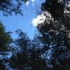 梓水苑キャンプ場の格安フリーサイトで楽しんできた連泊キャンプ
